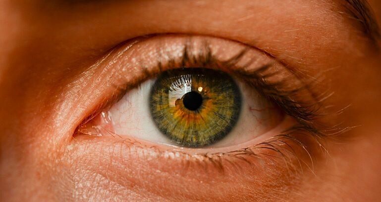 Eye 2681783 1920